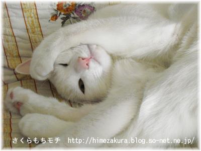 nobita02.jpg