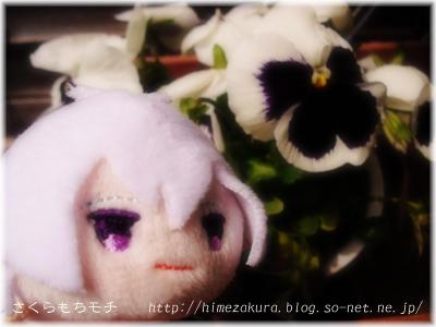 01sougo.jpg