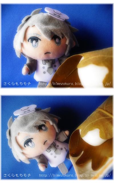 04pati_kashiwa.jpg
