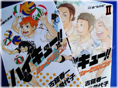 06HQ_novel.jpg