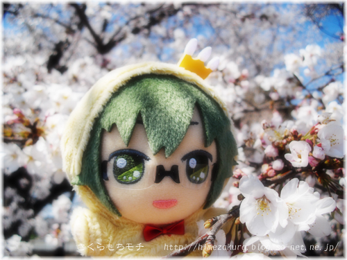 06yamato_top.jpg