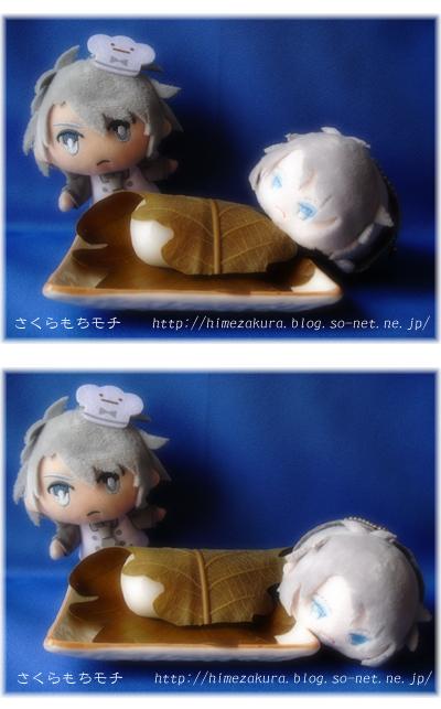 07nui_kashiwa.jpg