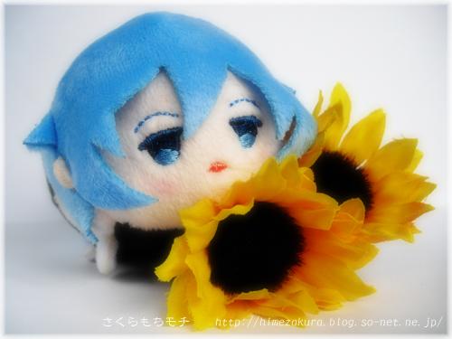 07tamaki_top.jpg