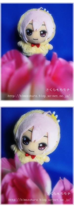 08tenn_osunui.jpg
