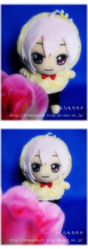 09tenn_osunui.jpg