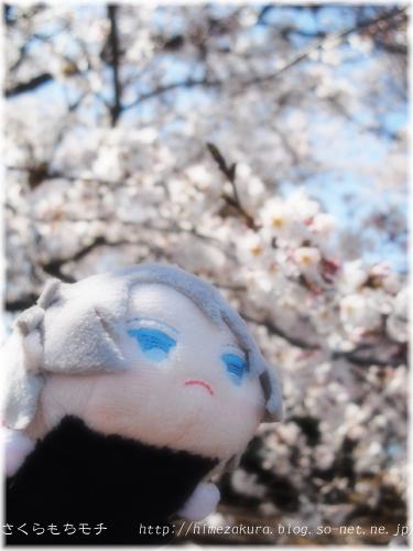 11mochigaku.jpg