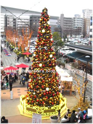 11xmastree.jpg