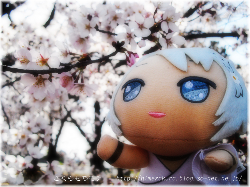 25shinwa_top.jpg