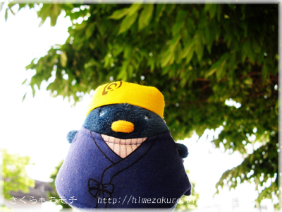33mikazuki_top.jpg